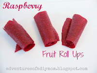 raspberry fruit roll ups