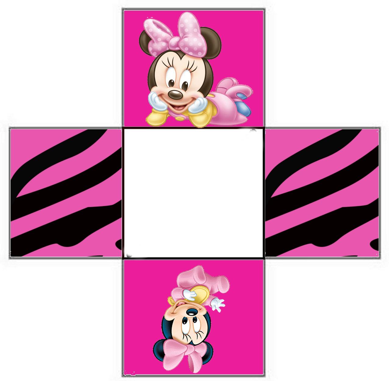 Minnie Zebra in Pink Free Printable Boxes.