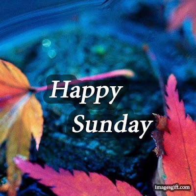 happy sunday images for lover