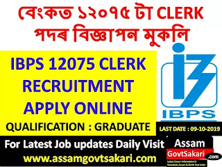IBPS 12075 Clerk Recruitment 2019
