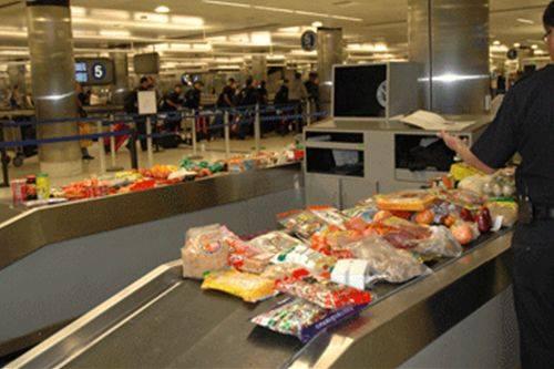 Ðừng phạm luật khi mang thực phẩm, tiền, vào Mỹ 2