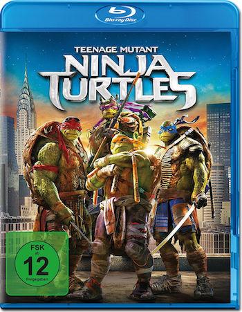 Teenage Mutant Ninja Turtles 2014 Dual Audio Hindi 480p BluRay 300mb