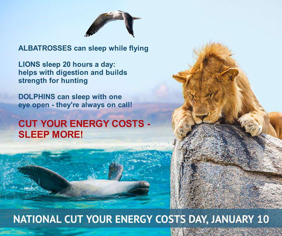 National Cut Your Energy Costs Day Wishes Unique Image
