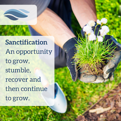 Sanctification - An opportunity to grow, stumble, recover and then continue to grow.