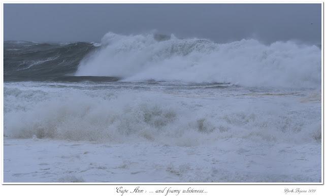 Cape Ann: ... and foamy whiteness...