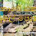 ලංකාවේ එකම හුණුගල් පොකුණ (The Only Limestone Pond In Sri Lanka)