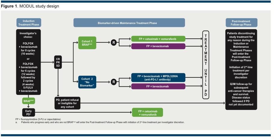 Atezolizumab Cobimetinib In Locally Advanced Or Metastatic Crc Phase Iii Imblaze370 Primary Endpoint Analysis