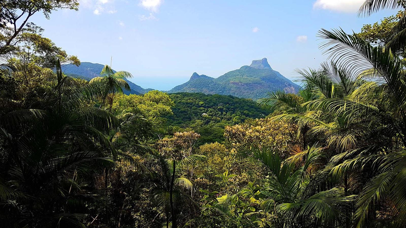 Vista do Almirante na Floresta da Tijuca.