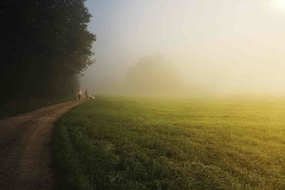 Paragraph on Importance of Morning Walk, Paragraph on Advantages of Morning Walk