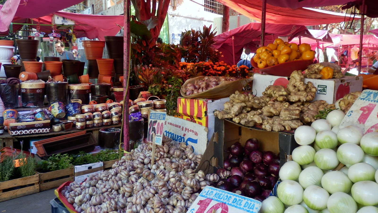 Mexican Food City Walk