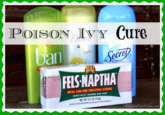 Poison Ivy Home Remedy Creative Cain Cabin