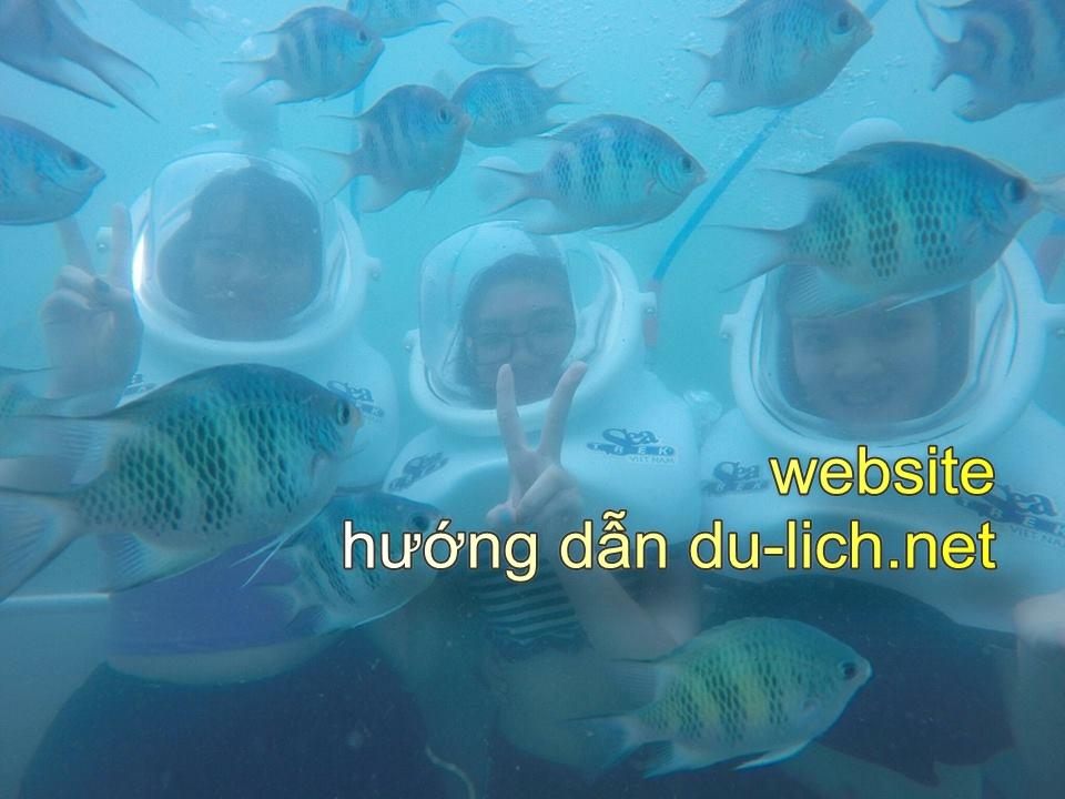 Tour đi bộ dưới đáy biển ở Cù Lao Chàm