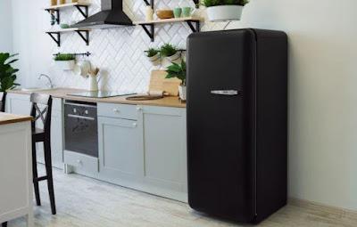 fridge-in-kitchen