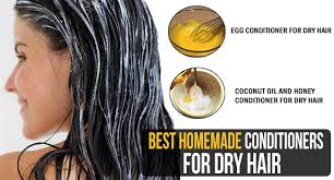Homemade Conditioners For Dry Hair'