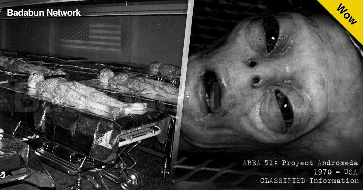 ovnis extraterrestres paranormal universo ciencia marcianos