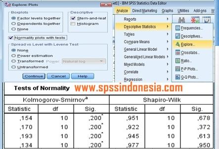 Cara Uji Normalitas untuk One Way Anova dengan SPSS Lengkap