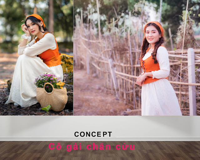 concept co gái hà lan