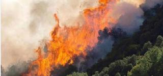 Καίγονται σπίτια στην Κινέτα - Τρέχουν να σωθούν οι κάτοικοι