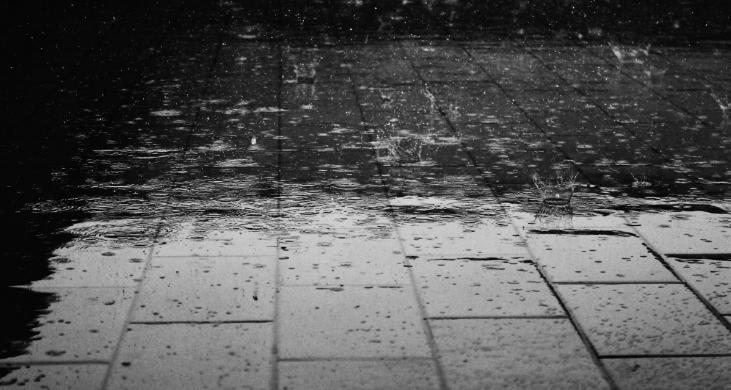 ما تفسير حلم المطر في المنام؟