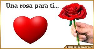 Una rosa para ti con letras