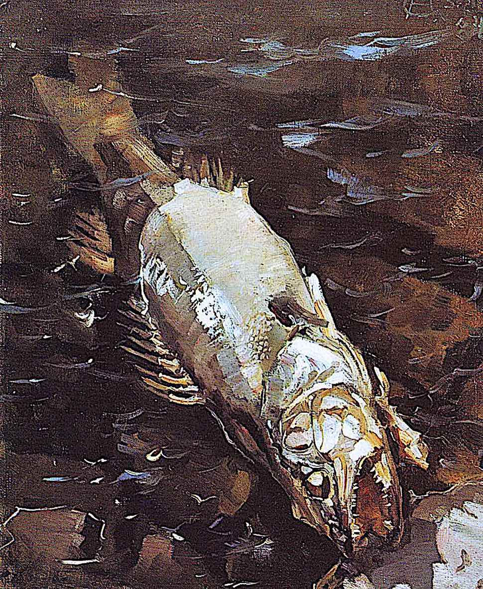 an Akseli Gallen-Kallela 1884 painting of a dead fish at shore