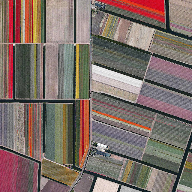 an aerial birdseye view of a flower farm in the Netherlands