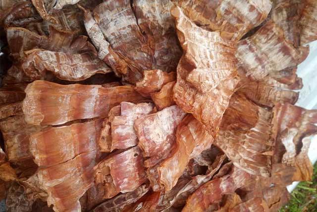 măng khô sau khi sơ chế-98/2 Quang Trung, Đà Nẵng