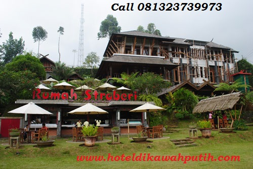 Booking villa di area wisata kawah putih dari gresik
