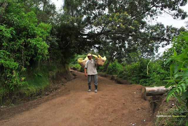 Pesona Kawah Ijen Banyuwangi | Foto Video Jalur Pendakian