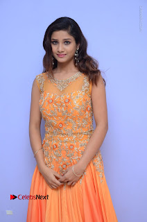 Telugu Actress Aarti Stills in Long Dress at Plus One ( 1) Audio Launch  0005.jpg