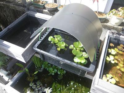 NVボックス 屋根
