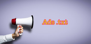 Google-Adsense-Ads. txt-Issue-Solution-Image