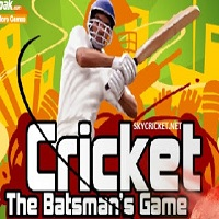 Play Cricket The Batsman Game