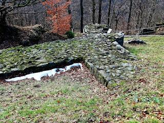 Harzburg Reste des Palas