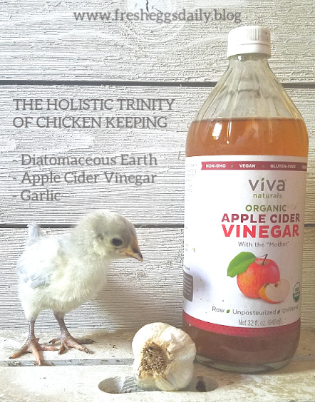 The Holistic Trinity Apple Cider Vinegar Garlic And