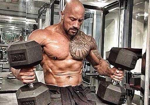 Bodybuilding Fitness Best Dumbbell Chest Exercises