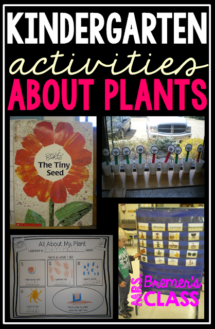 Learning about plants and growing a garden activities in Kindergarten