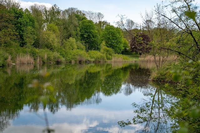 Premiumwanderweg DonAUwald | Etappe 3 von Gundelfingen nach Dillingen 22