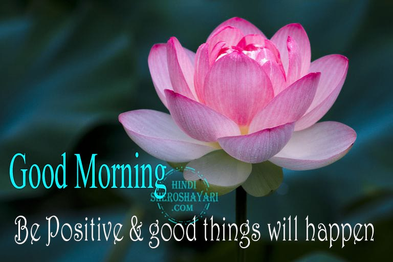 Good Morning Wishes with Lotus Flowers