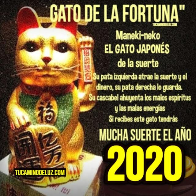 Gato japonés de la suerte 2020