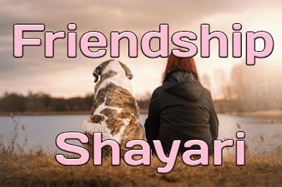 Download and share Friendship Shayari
