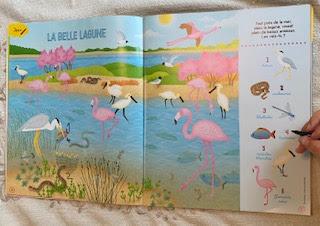 Activité du magazine La Petite Salamandre