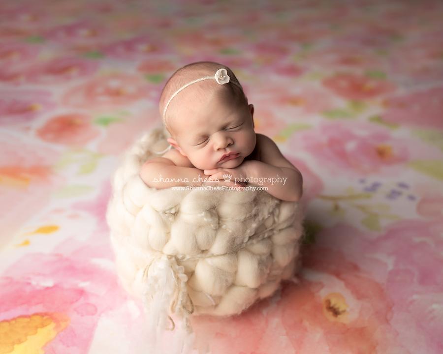 Newborn photography Eugene/Springfield OR