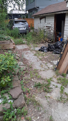 East York Backyard Summer Garden Cleanup Before by Paul Jung Gardening Services--a Toronto Small Gardening Company