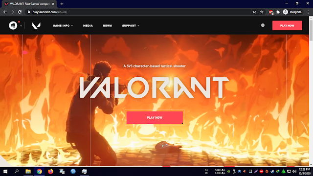 Halaman Website Valorant
