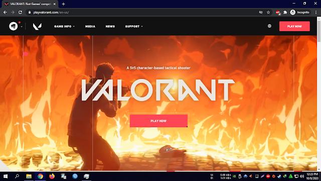Halaman Website Valorant