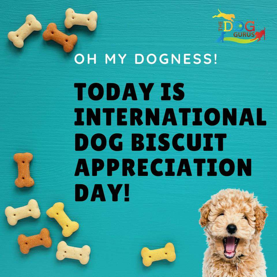 International Dog Biscuit Appreciation Day Wishes Beautiful Image