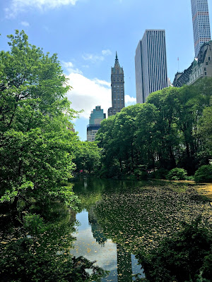 NYC travel guide new york city central park midtown