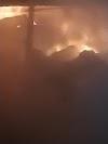 Ολική καταστροφή απο την πυρκαγιά εχθές το βράδυ σε σταύλο στον Αρωνά Πιερίας - Κάηκαν μοσχάρια ζωντανά (φωτογραφίες)