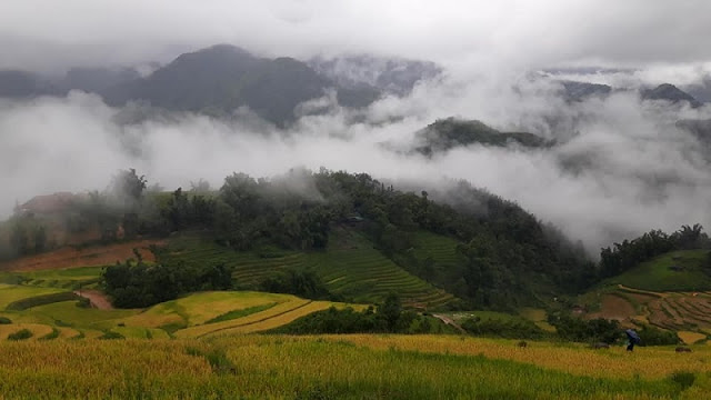 Discover the Simple Beauty of Lao Cai